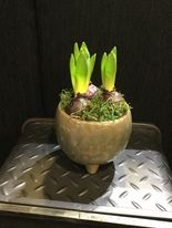 Handmade footed bowl with hyacinth