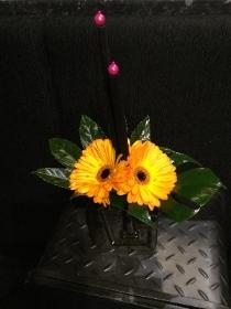 Black Picasso style vase with bright Gerbera finish