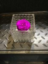 Deep purple everlasting rose in glass dimpled tank vase