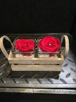 Twin red everlasting roses in vintage glass crate
